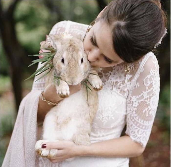 Chlupatí svatebčané - Obrázek č. 63