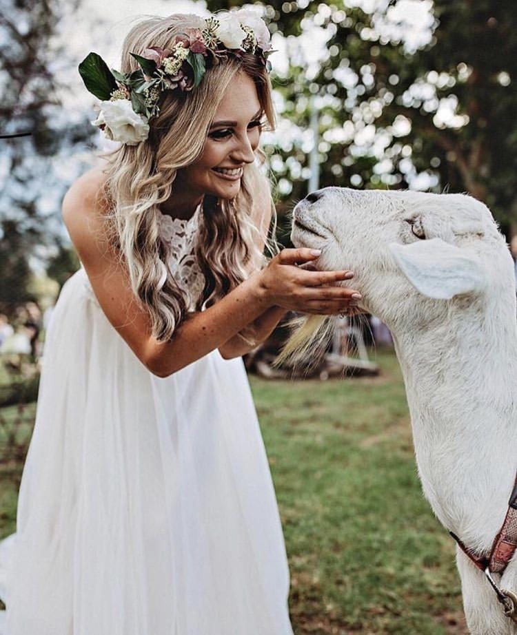 Chlupatí svatebčané - Obrázek č. 65