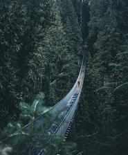 Capilano Suspension - Bridge park