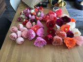 Krepove kvety (rozne),