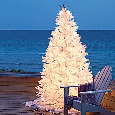 (ne)tradičné vianoce - Obrázok č. 1