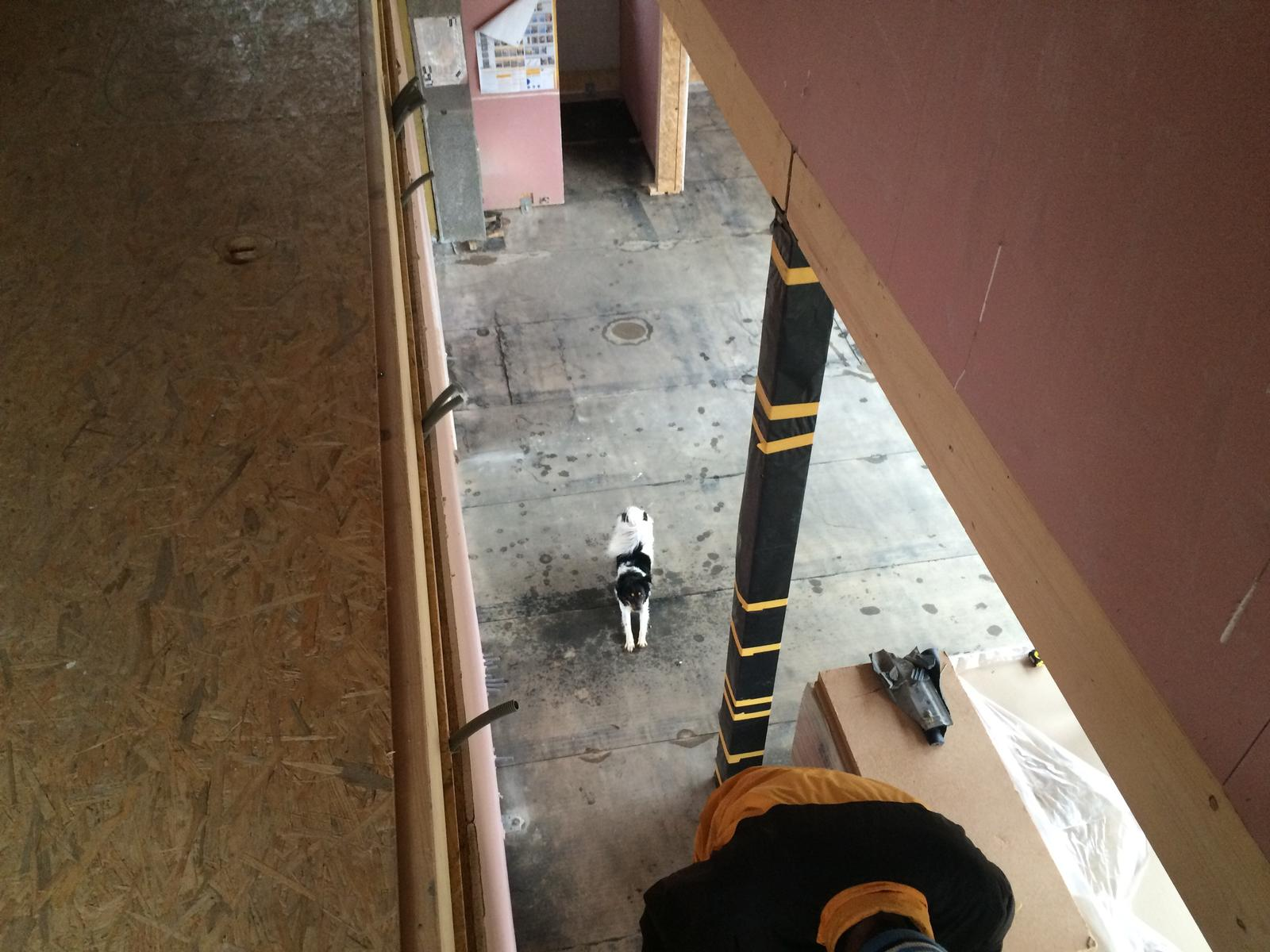 """Sedliacky dom, alias naša """"sýpka"""" - Fesak este nema schody, aby za nami vybehol :-)"""