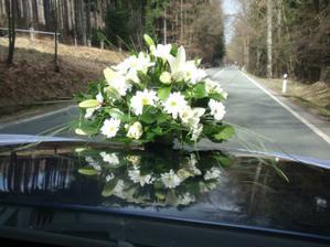 kytička na autě