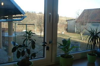 pohled z kuchyně na dvorek
