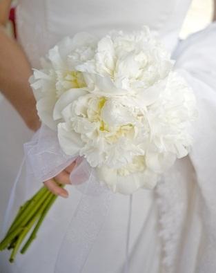 Chryzantemy ako svadobna kytica - Obrázok č. 9