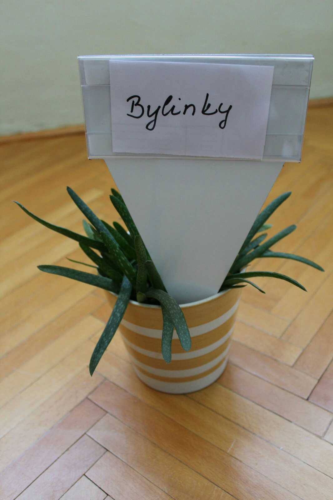 Tabuľka na označenie rastlín - Obrázok č. 1