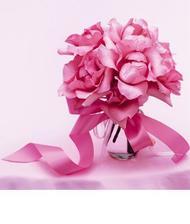 .. nebo jim podobné růže :-)