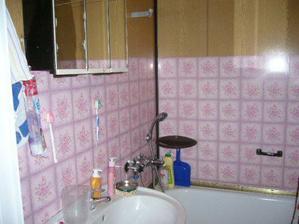 koupelna před R