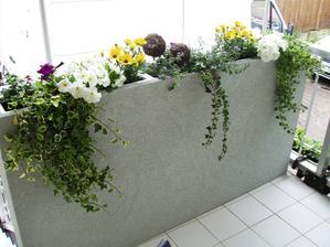 Kvetináč je dlhý 145 cm a vysoký 85 cm