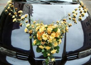 taketo svadobne auto, ale z kál