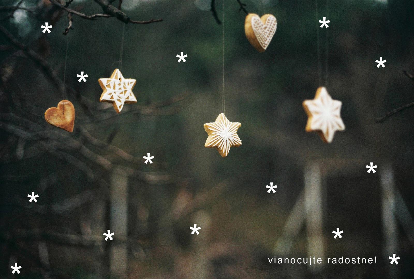 Majte Vianoce presne také, aké si ich predstavujete! To vám želá tím Mojej svadby :) - Obrázok č. 1