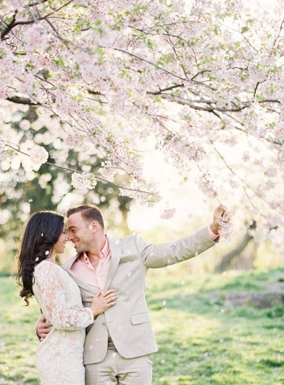 Svadba v ovocnom sade - Obrázok č. 1