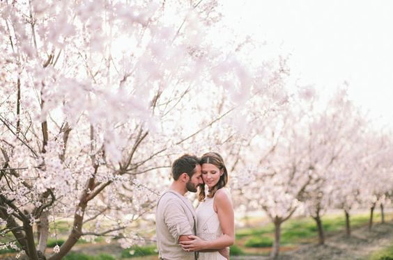 Svadba v ovocnom sade - Obrázok č. 10