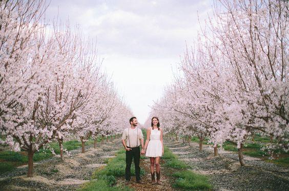 Svadba v ovocnom sade - Obrázok č. 13