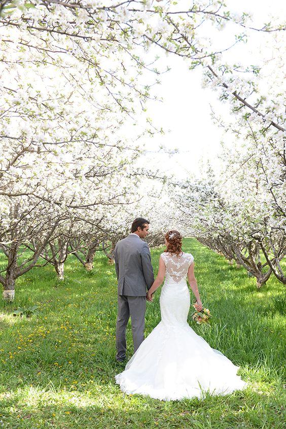 Svadba v ovocnom sade - Obrázok č. 16