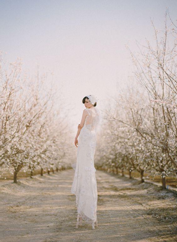 Svadba v ovocnom sade - Obrázok č. 23