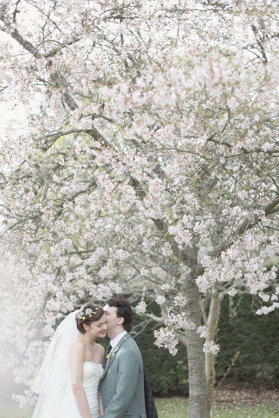 Svadba v ovocnom sade - Obrázok č. 35