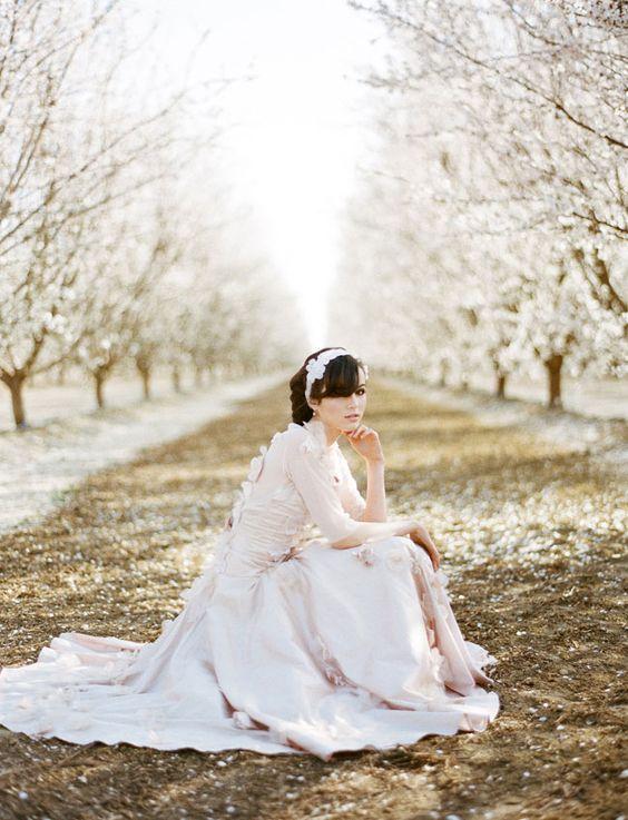 Svadba v ovocnom sade - Obrázok č. 53