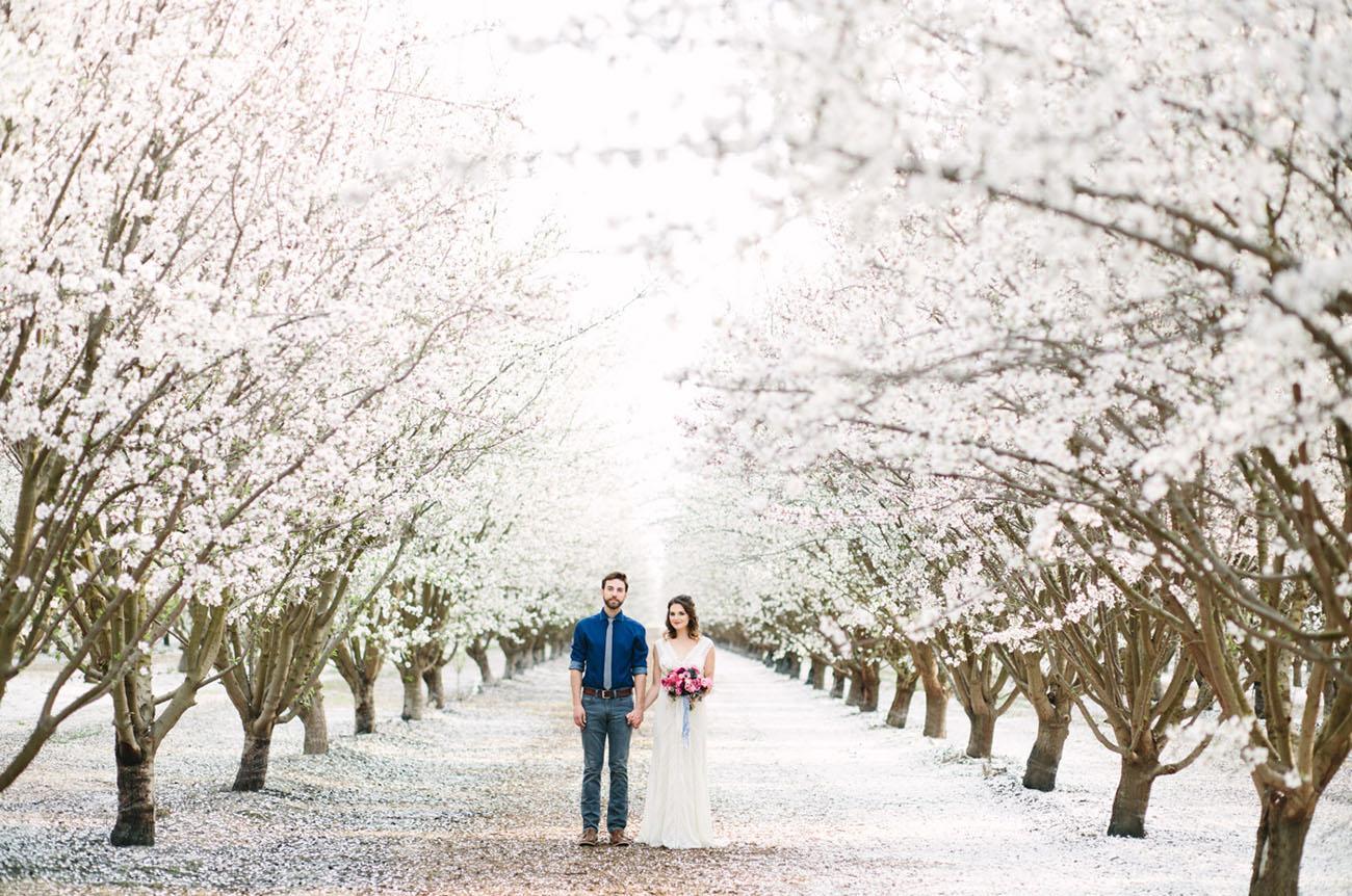 Svadba v ovocnom sade - Obrázok č. 77