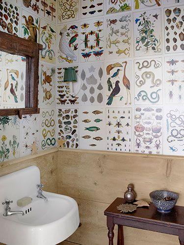 Inšpirované herbárom a botanickou záhradou - Obrázok č. 7