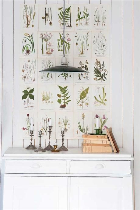 Inšpirované herbárom a botanickou záhradou - Obrázok č. 15