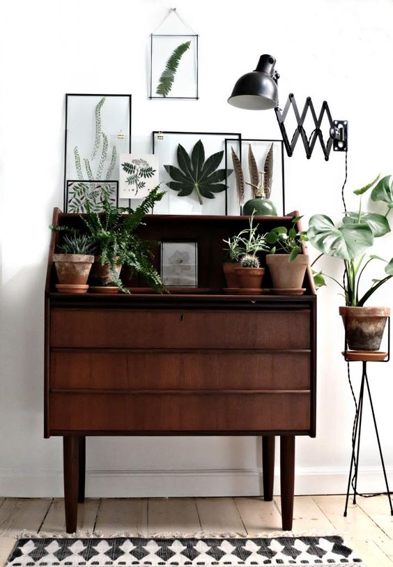Inšpirované herbárom a botanickou záhradou - Obrázok č. 21