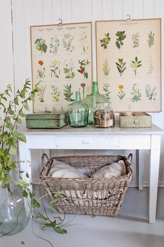 Inšpirované herbárom a botanickou záhradou - Obrázok č. 26