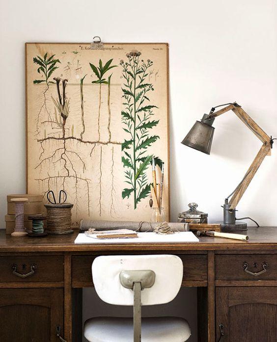 Inšpirované herbárom a botanickou záhradou - Obrázok č. 50