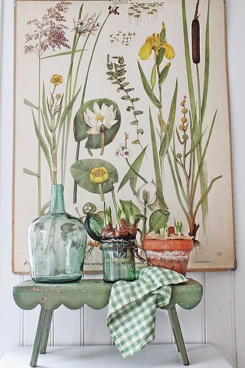 Inšpirované herbárom a botanickou záhradou - Obrázok č. 89