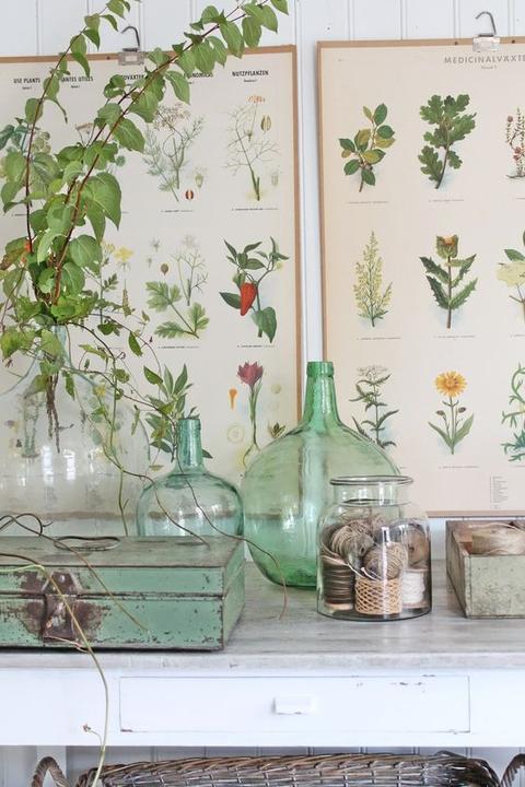 Inšpirované herbárom a botanickou záhradou - Obrázok č. 90