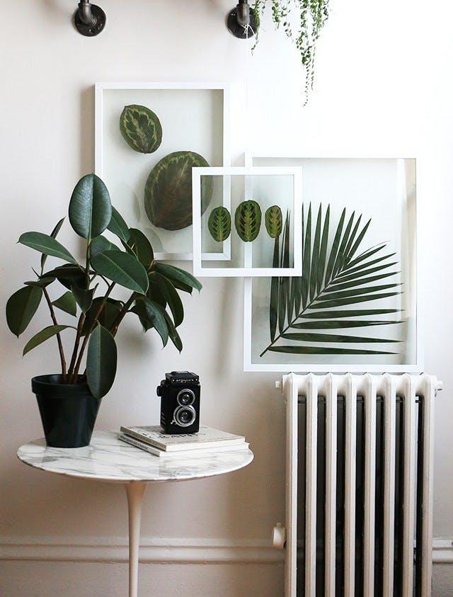 Inšpirované herbárom a botanickou záhradou - Obrázok č. 92