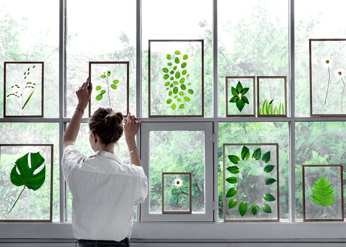 Inšpirované herbárom a botanickou záhradou - Obrázok č. 94