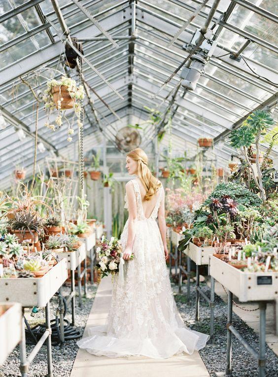 Svadobné fotenie v skleníku - Obrázok č. 27