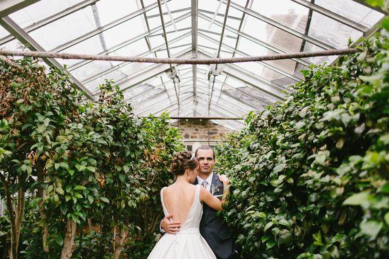 Svadobné fotenie v skleníku - Obrázok č. 71