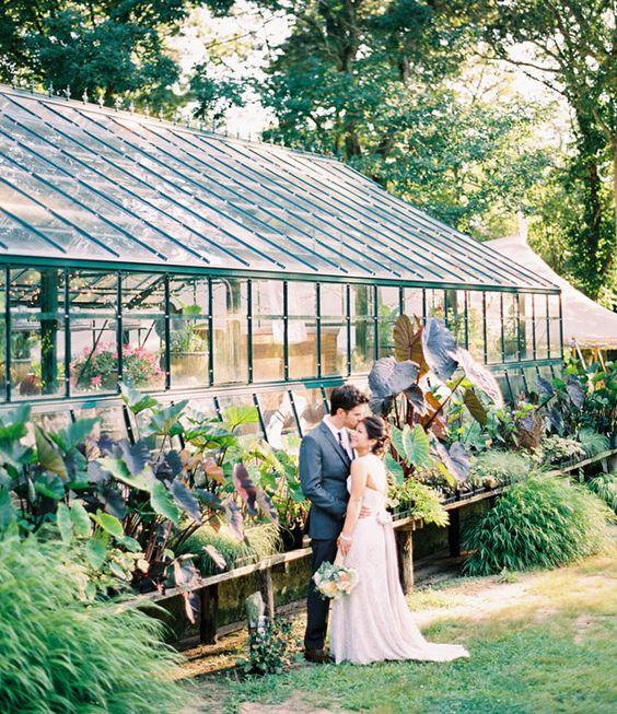 Svadobné fotenie v skleníku - Obrázok č. 92