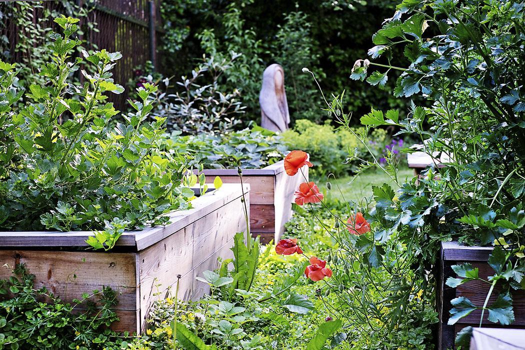 Ferdinandove záhrady - Obrázok č. 30