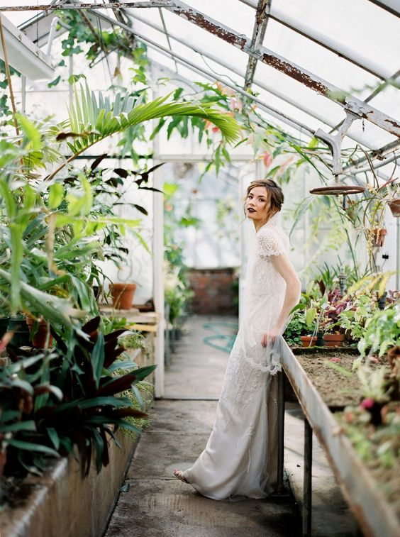 Svadobné fotenie v skleníku - Obrázok č. 105