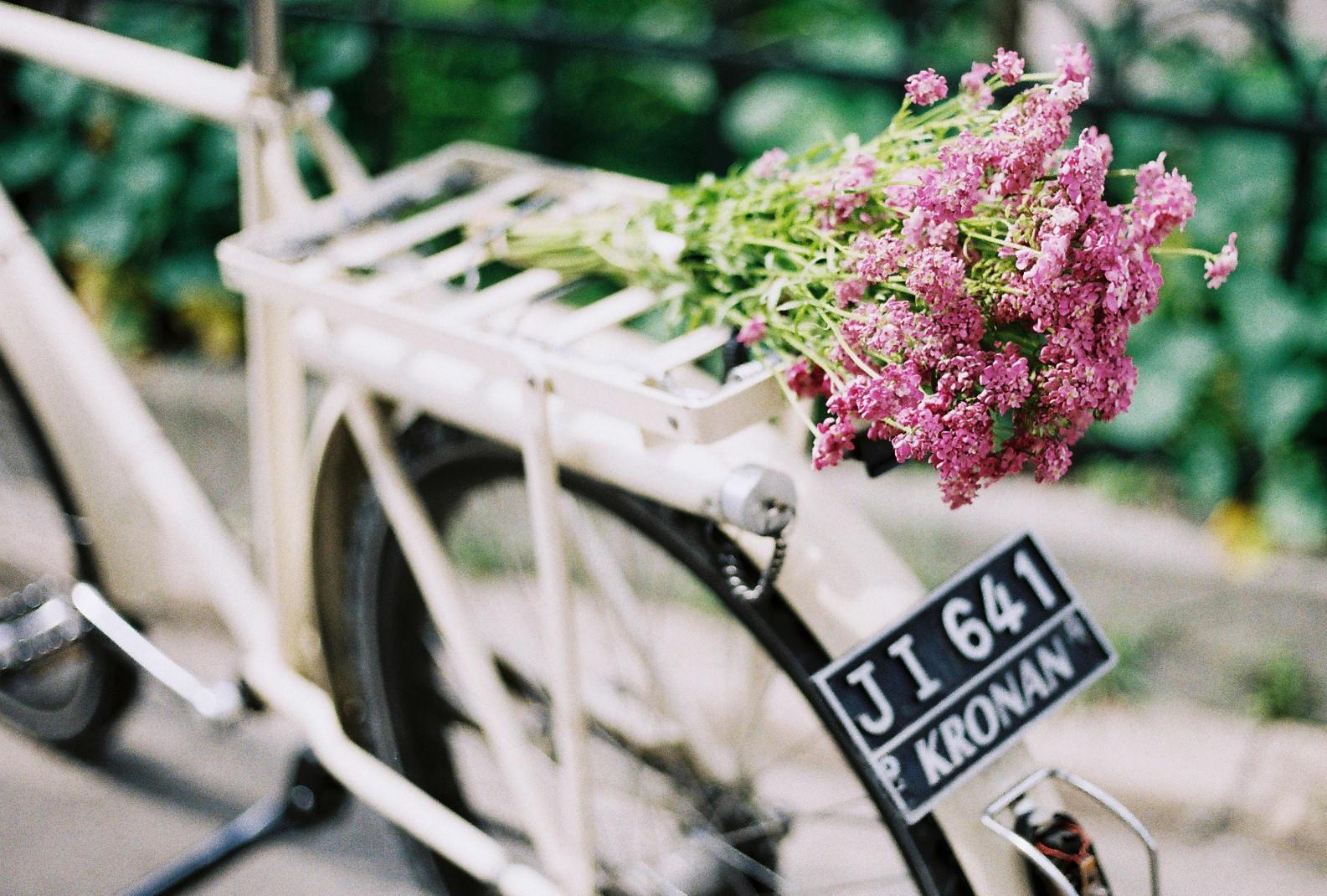 Žienky krásne, dnes je náš deň! Oslavujte, užívajte si ho, doprajte si dnes malé aj veľké potešenia. A aspoň takto na diaľku vám všetkým posielam kyticu kvetov :) - Obrázok č. 1