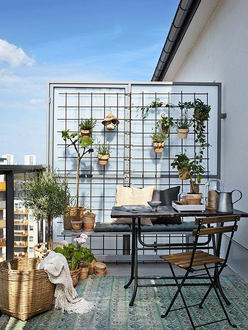 Malý balkón s veľkou atmosférou - inšpirácie - Obrázok č. 83