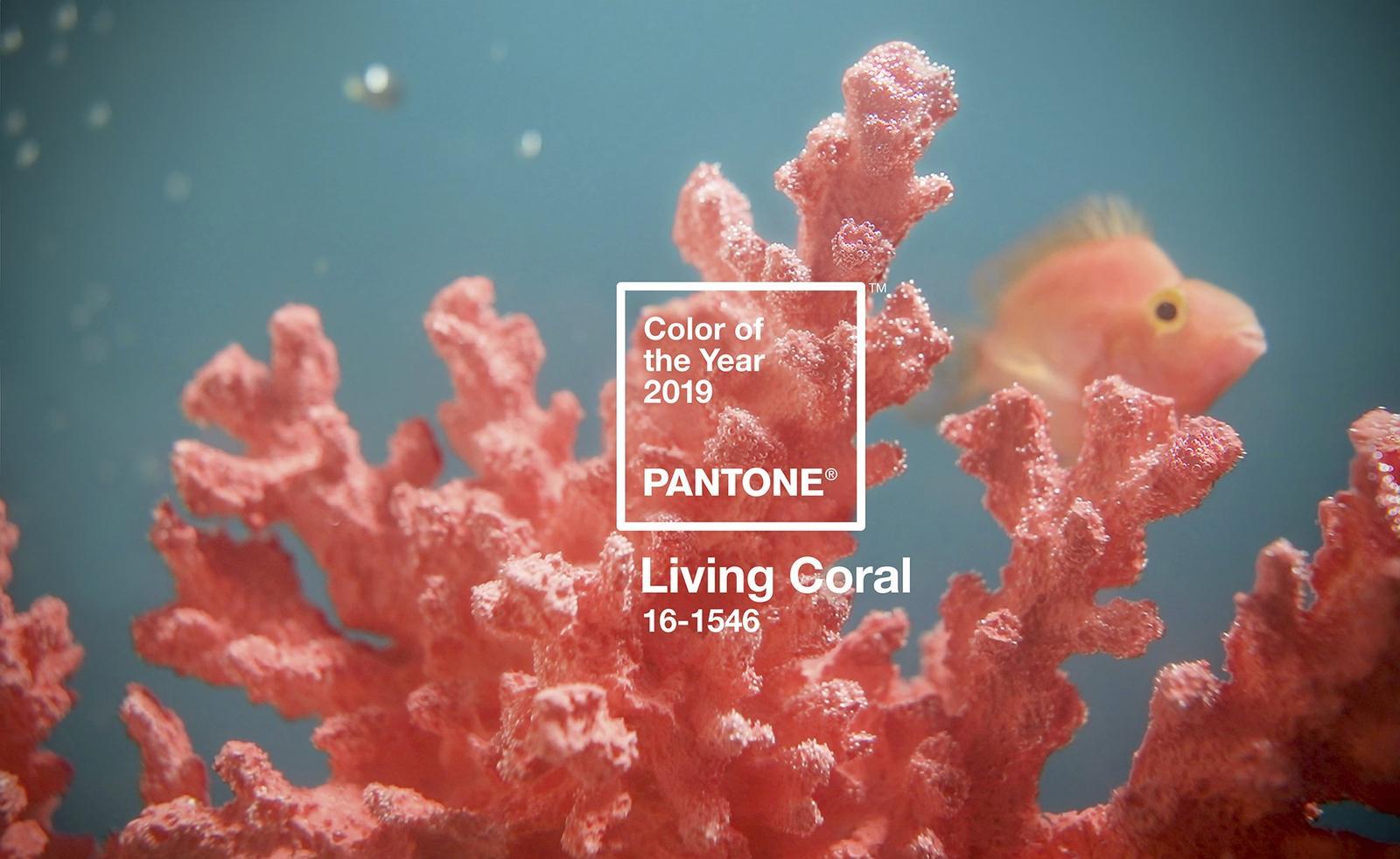Zachytili ste už, že farbou roka 2019 je Living coral? Čo poviete? Páči, nepáči? :) budete niektorá svadbu ladiť v tejto farbe? :) - Obrázok č. 1