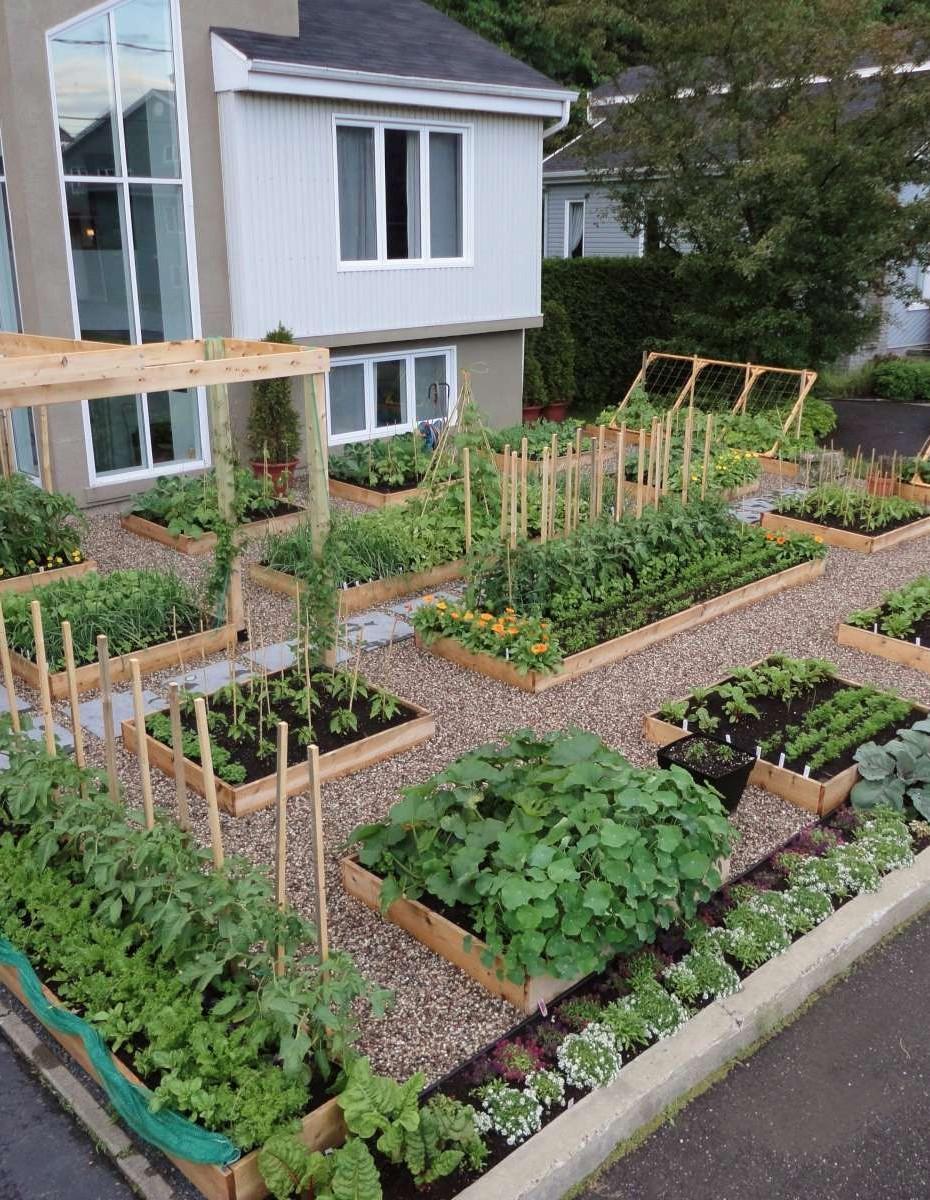 Vyvýšené záhony v naší zahradě - Fotografie skupiny