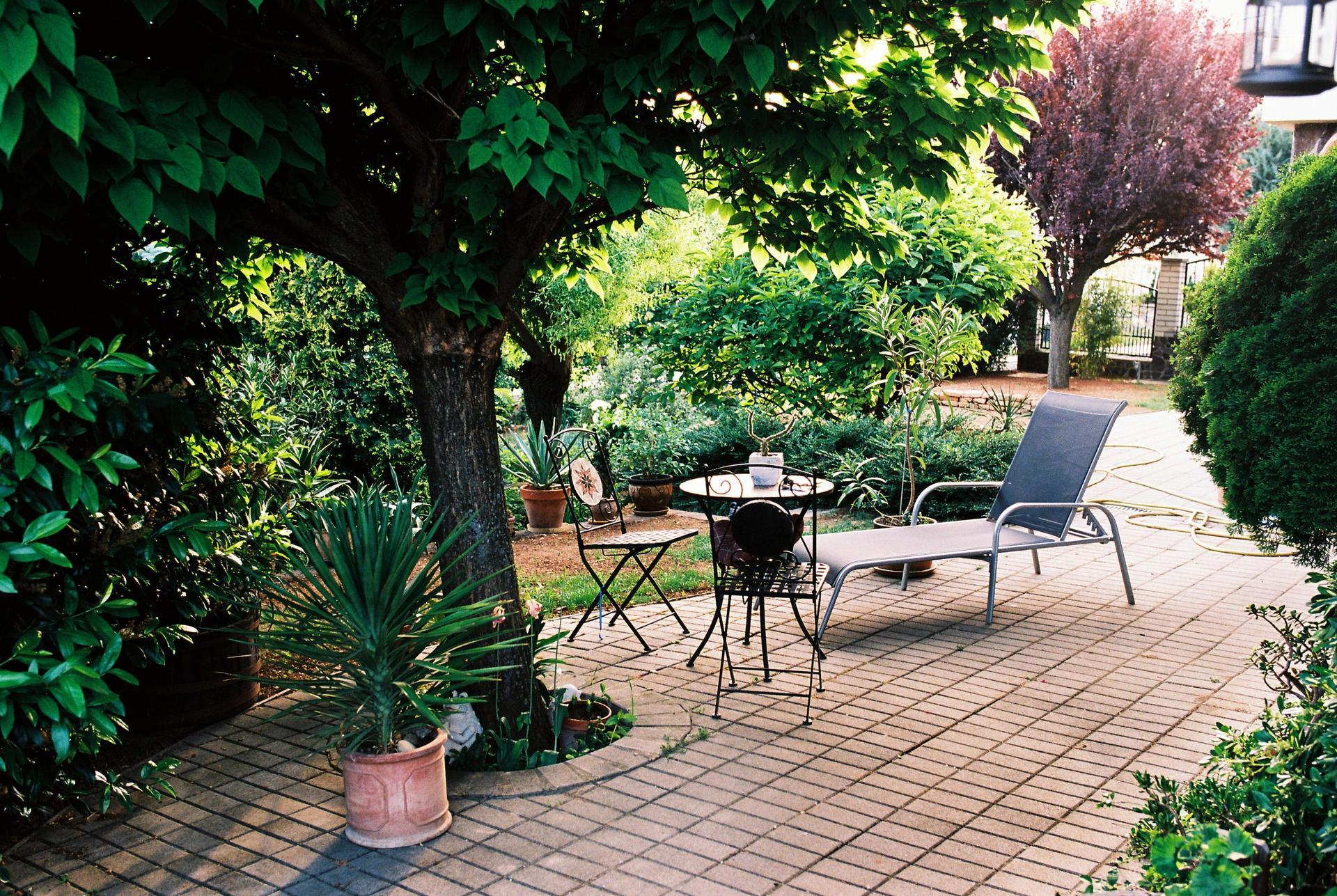 Záhrada u rodičov - Obrázok č. 17