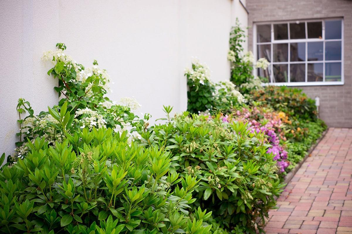 Ferdinandove záhrady - Obrázok č. 59