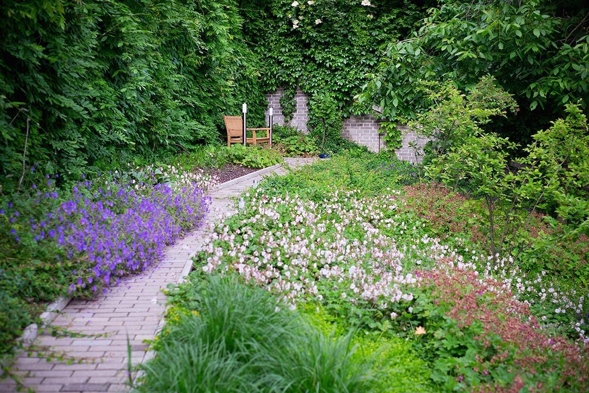 Ferdinandove záhrady - Obrázok č. 58