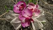 2x menší ratanovo-orchidejová dekorace,