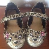 lakovky kočičky, 68