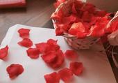 cervene lupene ,