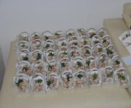 košíčkování..rozvezli jsme jich přes 50...koláčky byly výborné (pekárna ve Štěpánkově ul. Chrudim)