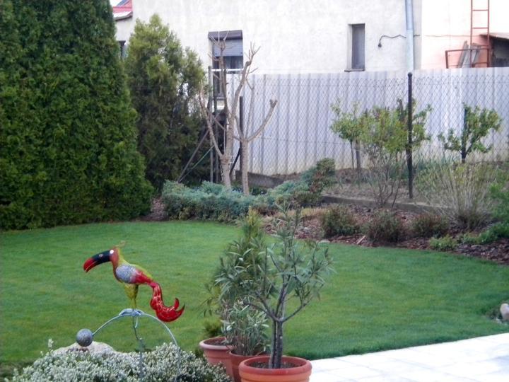 Jar 2012 v nasej zahradke - Obrázok č. 17