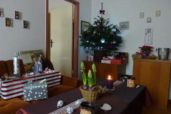 Štědrý den dopoledne..dárečky zabalené, jen na ně Ježíšek zapomněl dát cedulky..tak u čaje přemýšlí, co kdo najde pod stromečkem..